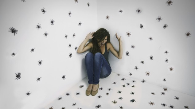 Man sieht eine Frau, die in einem Raum mit vielen Spinnen sitzt.