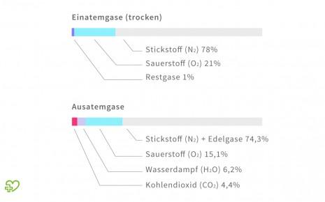 Die Grafik zeigt die Prozentwerte der Anteile von Suaerstoff, Kohlendioxid, Stickstoff und Wasserdampf der Ein- und Ausatemluft.