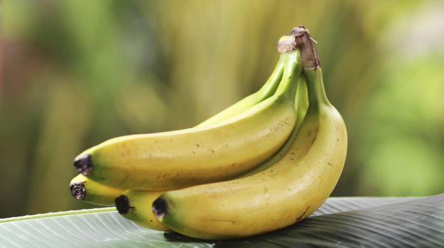Man sieht drei Bananen.