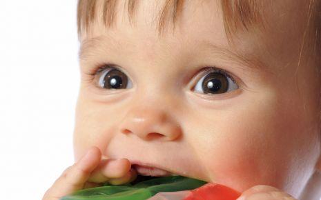 Ein Baby nimmt einen Beißring in den Mund.