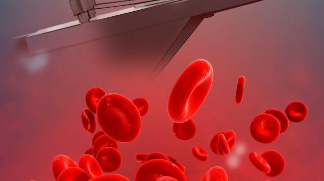 Das Bild zeigt ein Mikroskop und rote Blutkörperchen.