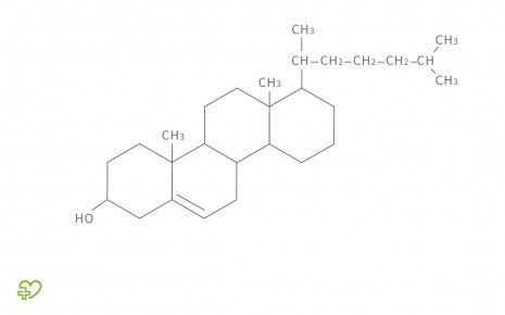 Strukturformel für Cholesterol
