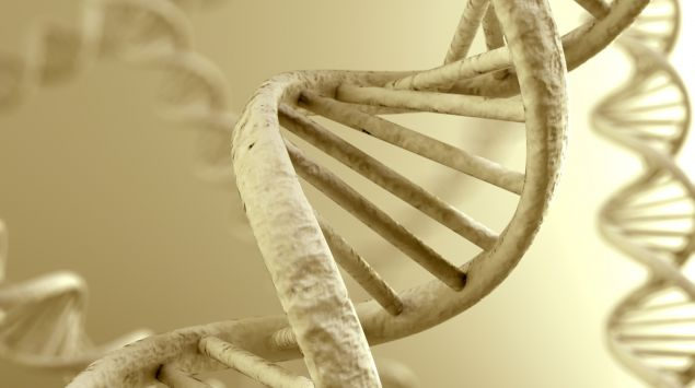 3D-Modell einer DNA-Helix