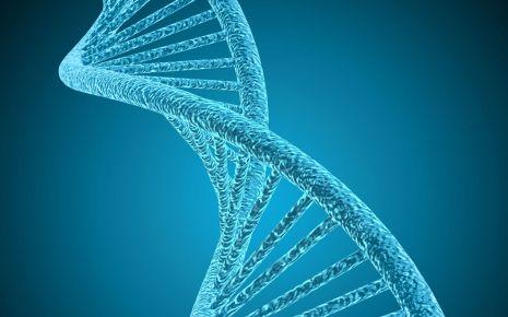 Man sieht eine blaugefärbte DNA-Doppelhelix