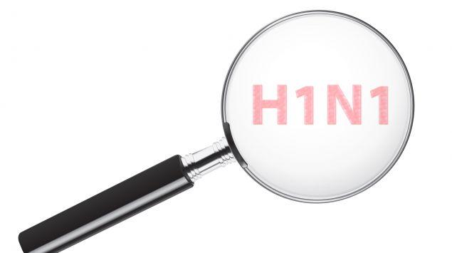 Man sieht den Schriftzug H1N1 unter einer Lupe.