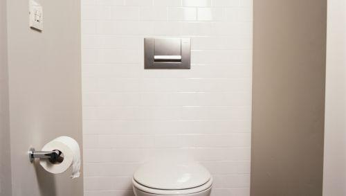 Das Bild zeigt eine Toilette.