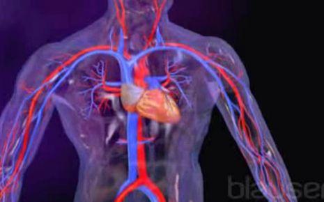 Herzinsuffizienz Video