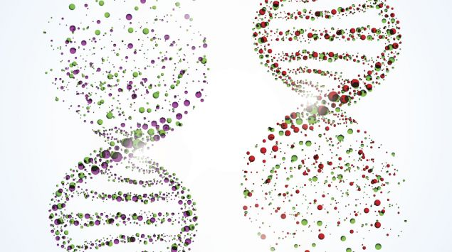 Das Bild zeigt DNA-Stränge