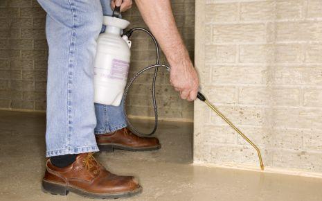Mann sprüht Insektizid auf den Boden.