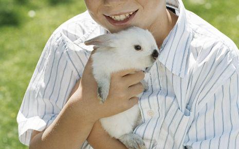 Ein Junge hält ein Kaninchen im Arm.