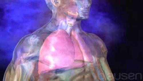 Kehlkopfentzündung Video