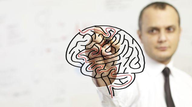 Das Bild zeigt einen Mann, der ein Gehirn aufzeichnet.