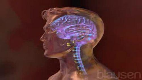 Meningitis Video
