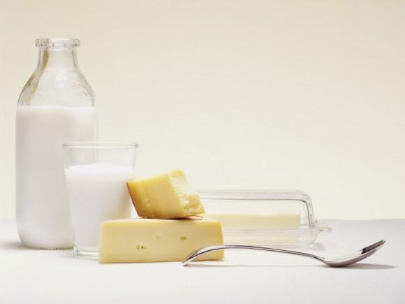 Verschiedene Milchprodukte: Käse, Milch und Butter.