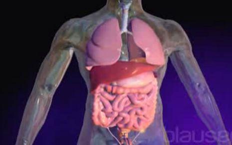 Mukoviszidose (zystische Fibrose) – Symptome, Ursachen & Therapie ...
