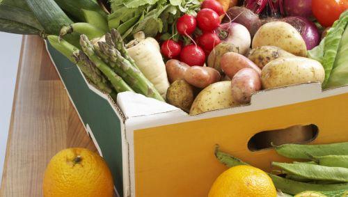Box voller Obst und Gemüse