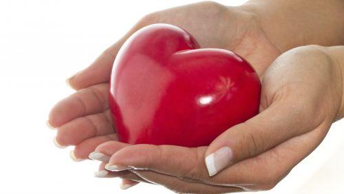 Das Bild zeigt ein Herz in Händen.