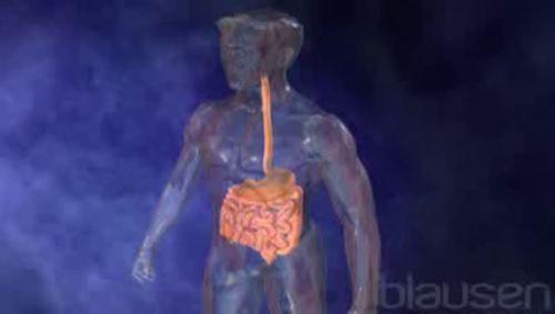 Probiotika Video