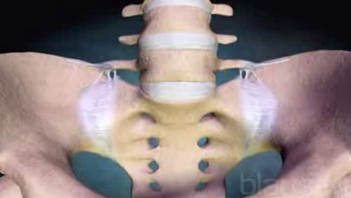 Iliosakralgelenk Video