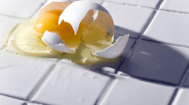 Das Bild zeigt ein zerbrochenes Ei.