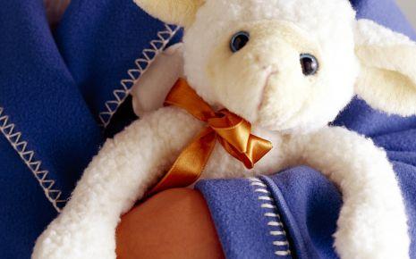 Ein kleines Kind hält ein Stoff-Schaf in den Händen.