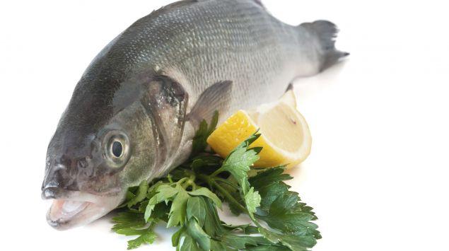 Das Bild zeigt einen rohen Fisch.
