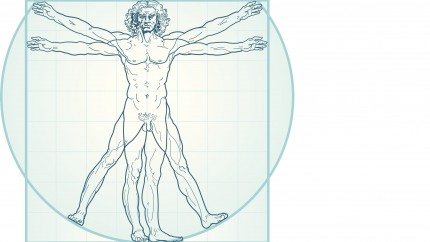 Lexikon der Anatomie & Physiologie