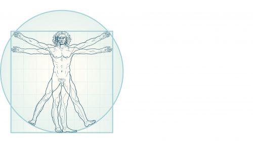 Man sieht den vitruvianischen Menschen in der Darstellung von Leonardo da Vinci.