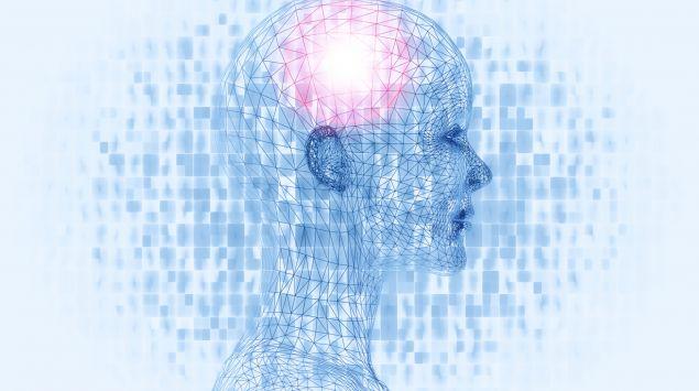 Das Bild zeigt eine Grafik von Kopf und Gehirn.