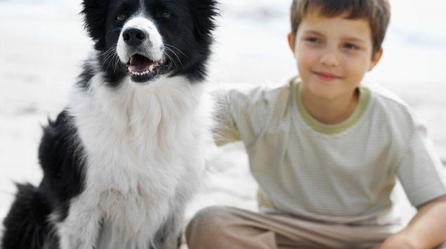 Das Bild zeigt einen Jungen und einen Hund.