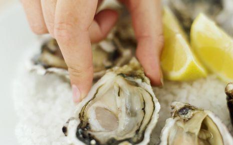Das Bild zeigt Austern.