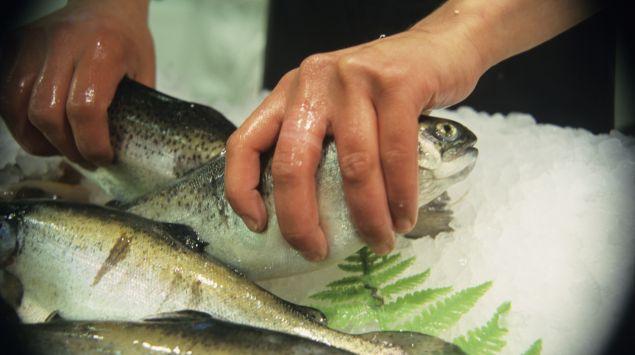 Das Bild zeigt eine Person, die rohe Forellen in den Händen hält.