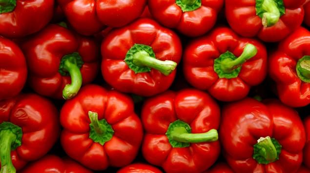 Zu sehen sind lauter rote Paprikafrüchte.