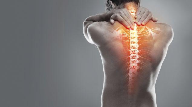 Das Bild zeigt den Rücken mit der grafisch dargestellten Wirbelsäule.