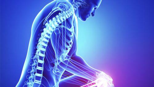 Man sieht die Illustration eines menschlichen Körpers, auf der man die Wirbelsäule und die Verbindung zum Knie sieht.