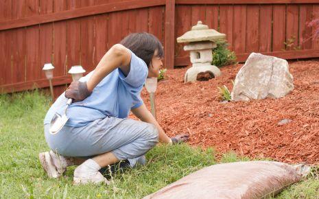 Eine Frau greift sich bei der Gartenarbeit vor Schmerzen in den Rücken.