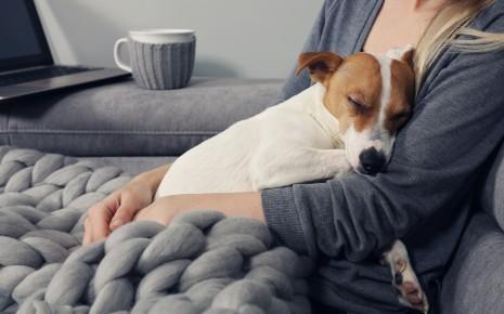 Frau mit Hund auf einem Sofa