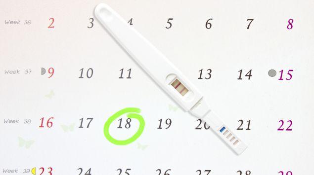 Schwangerschaftstest und Kalender