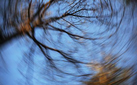 Morbus Menière: Man sieht eine verzerrte Darstellung von Baumkronen.
