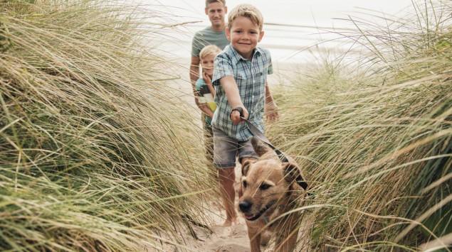 Eine Familie mit Hund läuft durch die Dünen.