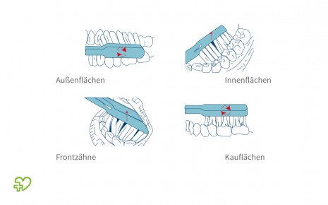 Rotationstechnik bei der Zahnpflege