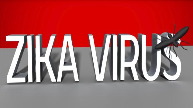 """Man sieht den Schriftzug """"Zika-Virus""""."""