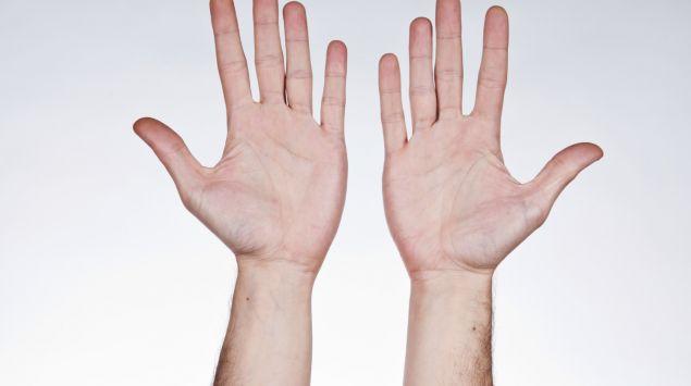 Das Bild zeigt zwei Hände.